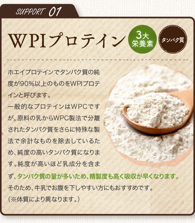 SUPPORT01 WPIプロテイン