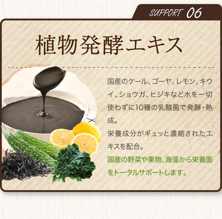 SUPPORT06 食物発酵エキス